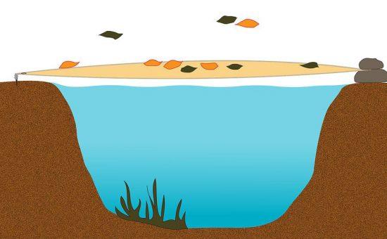 چگونه یک حوضچه باغ را برای زمستان آماده کنیم؟