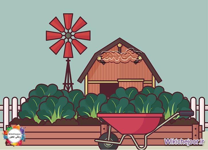 کاشت سبزیجات با دوام