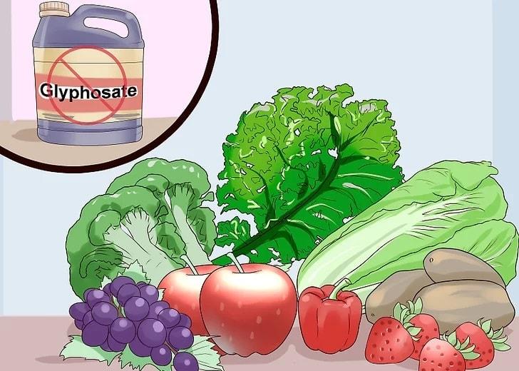 از خوردن غذاهایی که برای توازن باکتری های روده مضر است، پرهیز کنید