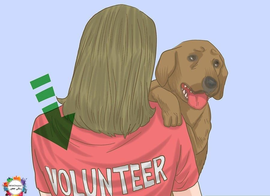 How to Be Animal Friendly