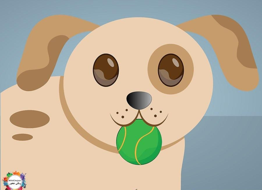 Make toys for your pet by recycling