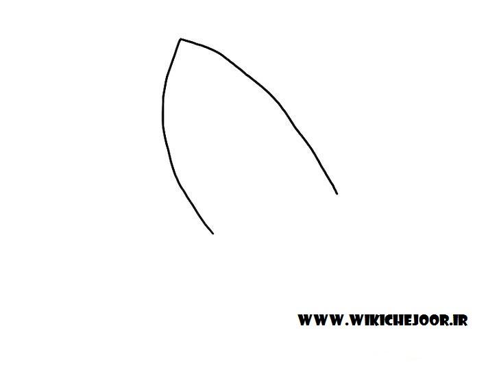 نقاشی کوسه طرح چهارم نمای پایین