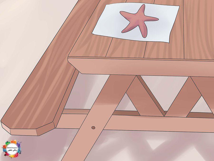 حفظ ستاره دریایی