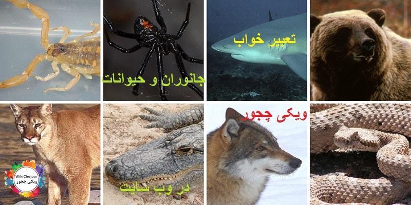 تعبیر خواب جانور (حیوانات)