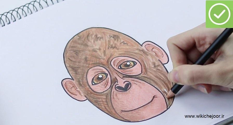 چگونه میمون بکشیم؟