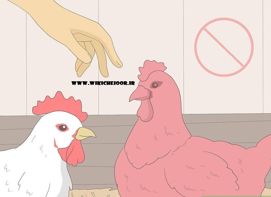 اجتناب از انتقال حیوانات